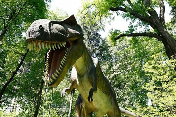 zatorland-parki-rozrywki-dinozatorland-sp-zoo